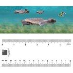 Bookmark - Baby Turtle