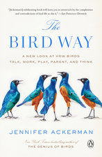 Bird Way