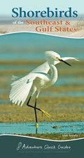 Shore Birds of the Southeast & Gulf States