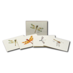 Dragonfly & Damselfly Assortment II