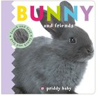 Bunny and Friends Touch and Feel