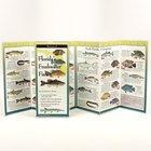 Florida's Freshwater Fishes